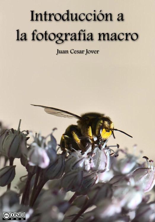 Introducción a la Fotografía Macro