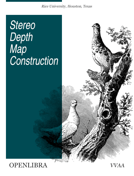 Stereo Depth Map Construction