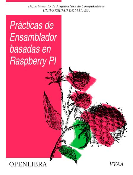 Prácticas de ensamblador basadas en Raspberry Pi